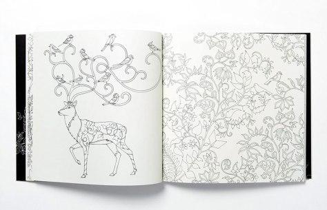 Johanna-Basford-Livro-para-colorir-Floresta-encantada-Jardim-Secreto-2