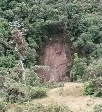 Foto: Imagem dita como a face de Jesus em barranco provavelmente na Colômbia