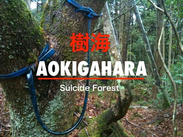 O suicídio na cultura oriental