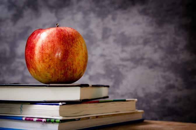 Professores: o dom de ensinar caminhos